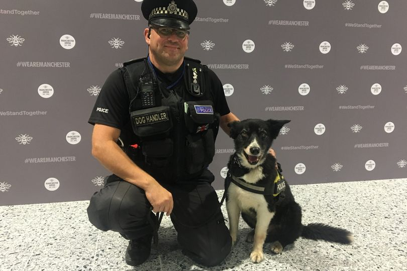 Heroic first dog on scene of Manchester Arena terror attack dies of old age